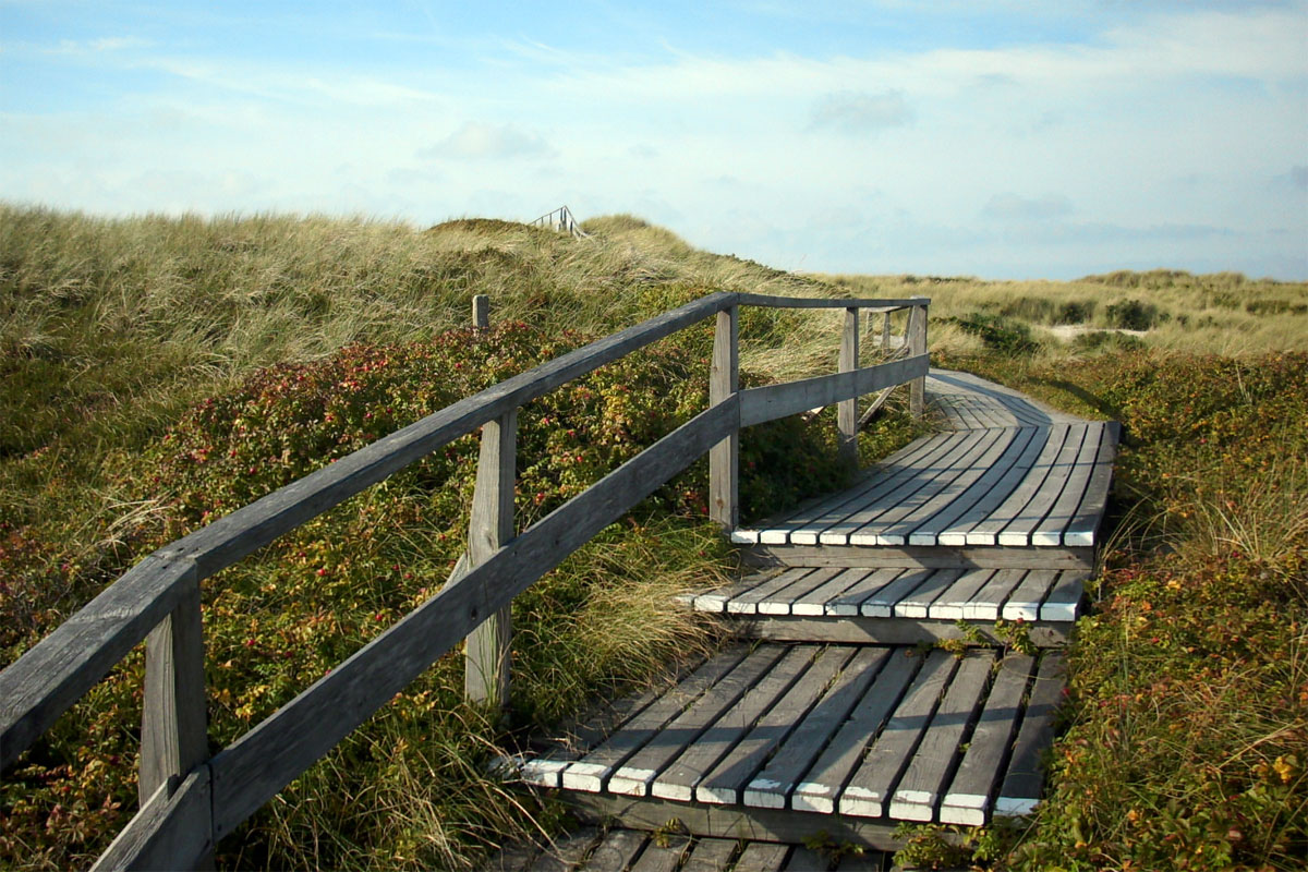 Klappholttal - Eine Inselliebe in den Sylter Dünen